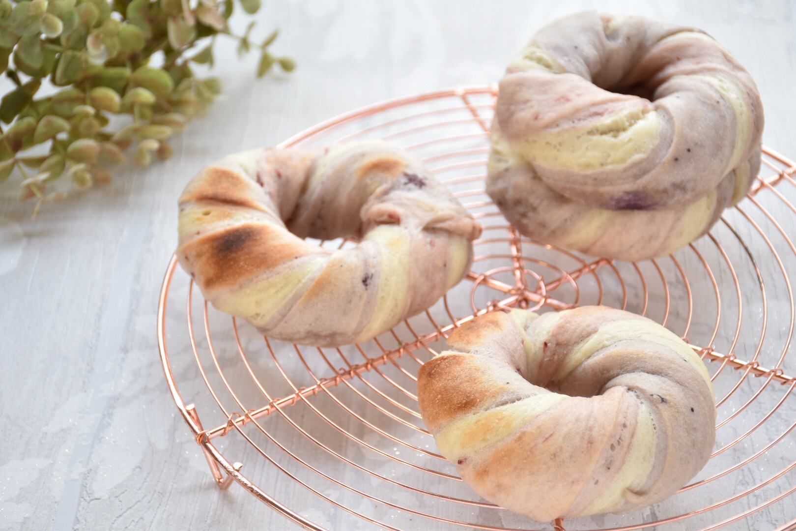 おうちパン教室~3色ベーグル in ららぽーと湘南平塚